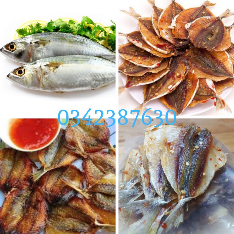 ca-chi-vang-bao-nhieu-tien-1kg
